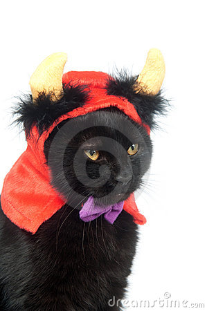 Black Cat With Devil Horns Royalty Free Stock Photography