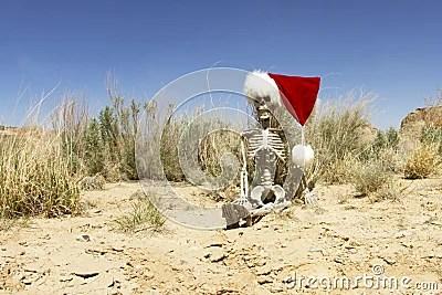 Christmas In The Desert Stock Photo Image 30969160