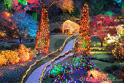 Christmas Lights In Butchart Gardens Stock Images Image