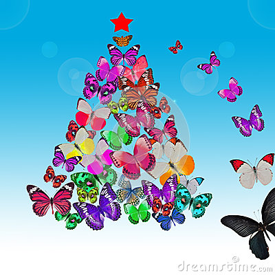 Colorful Butterfly Christmas Card Royalty Free Stock Photo