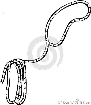 Cowboy Lasso Royalty Free Stock Image Image 1519536