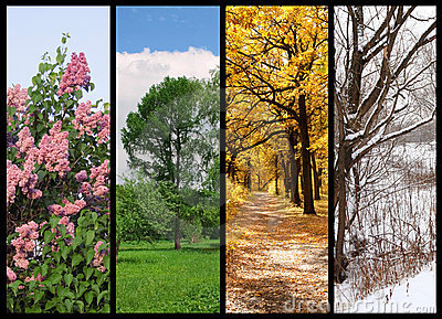 Image result for Spring, Summer, Fall and Winter