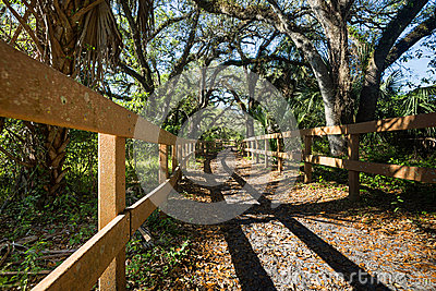 Horse Riding Trail Royalty Free Stock Image - Image: 38669516