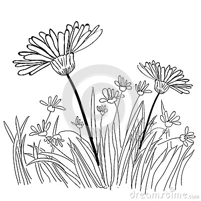 Illustration Of Grass And Plant Outlines Stock Vector