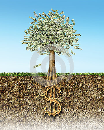 Money Tree In Soil Cross Section Showing US Dollar Sign