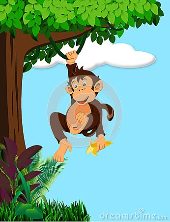 Monkey Cartoon Royalty Free Stock Photo Image 34617385