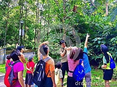 Nature appreciation - Bukit Batok Nature Park, Singapore