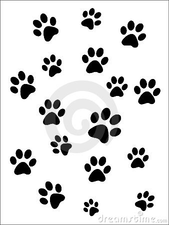 Paw Prints Stock Images Image 7958534