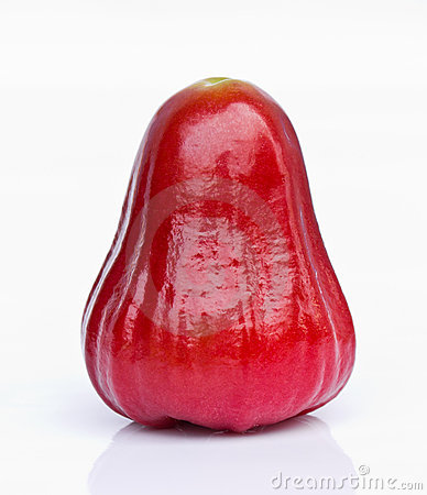 Rose Apple Stock Images Image 22817774
