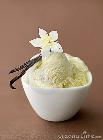 Vanilla On Ice Cream In A Bowl Royalty Free Stock Images