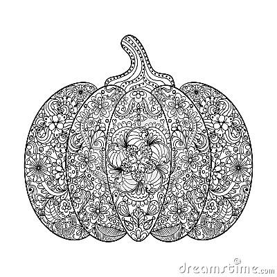 Vector Pumpkin Illustration Hand Drawn Vegetable In