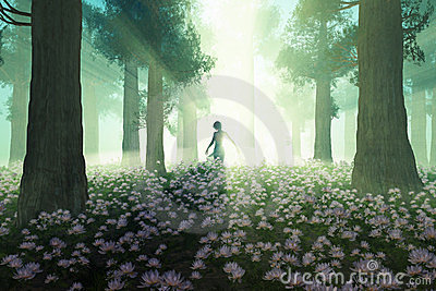 Woman In The Morning Forest Royalty Free Stock Images - Image: 23486929