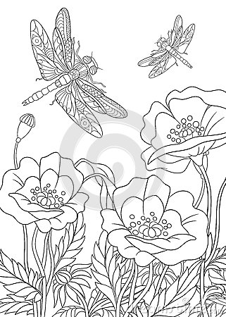 Zentangle Stylized Dragonfly Insect Stock Vector Image