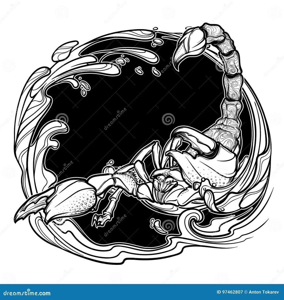 астрологический эскиз черноты Scorpio изолированный на белой