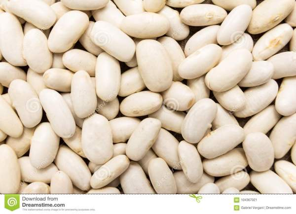 pdf phaseolus bean improvement in tanzania 19592005 - 800×533