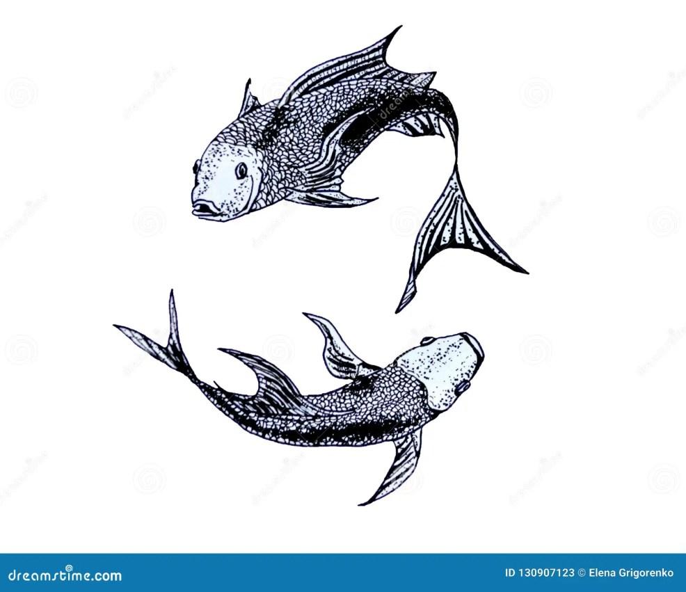 иллюстрация знака зодиака Pisces эскиз для татуировки иллюстрация