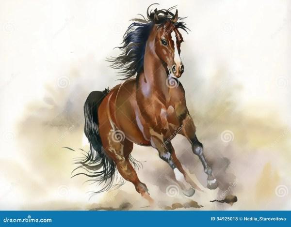 Идущая лошадь иллюстрация штока. иллюстрации насчитывающей ...