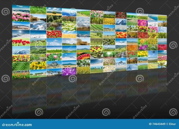 Коллаж много фото природы стоковое изображение ...