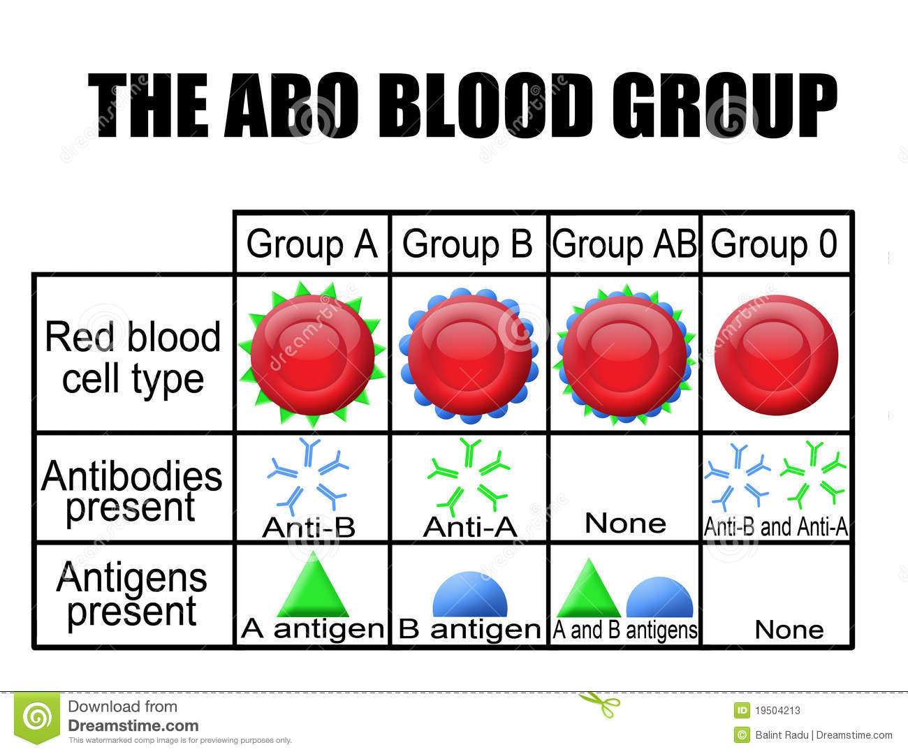 The Abo Blood Group Diagram Stock Photos