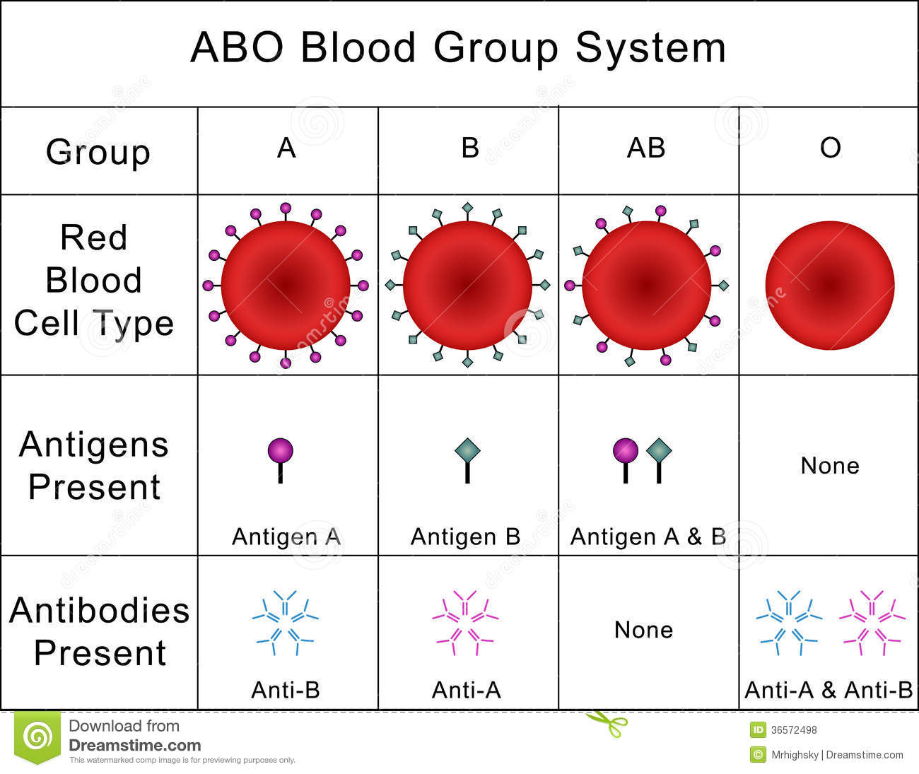 Abo Blood Group System Stock Photo Illustration Of Blood
