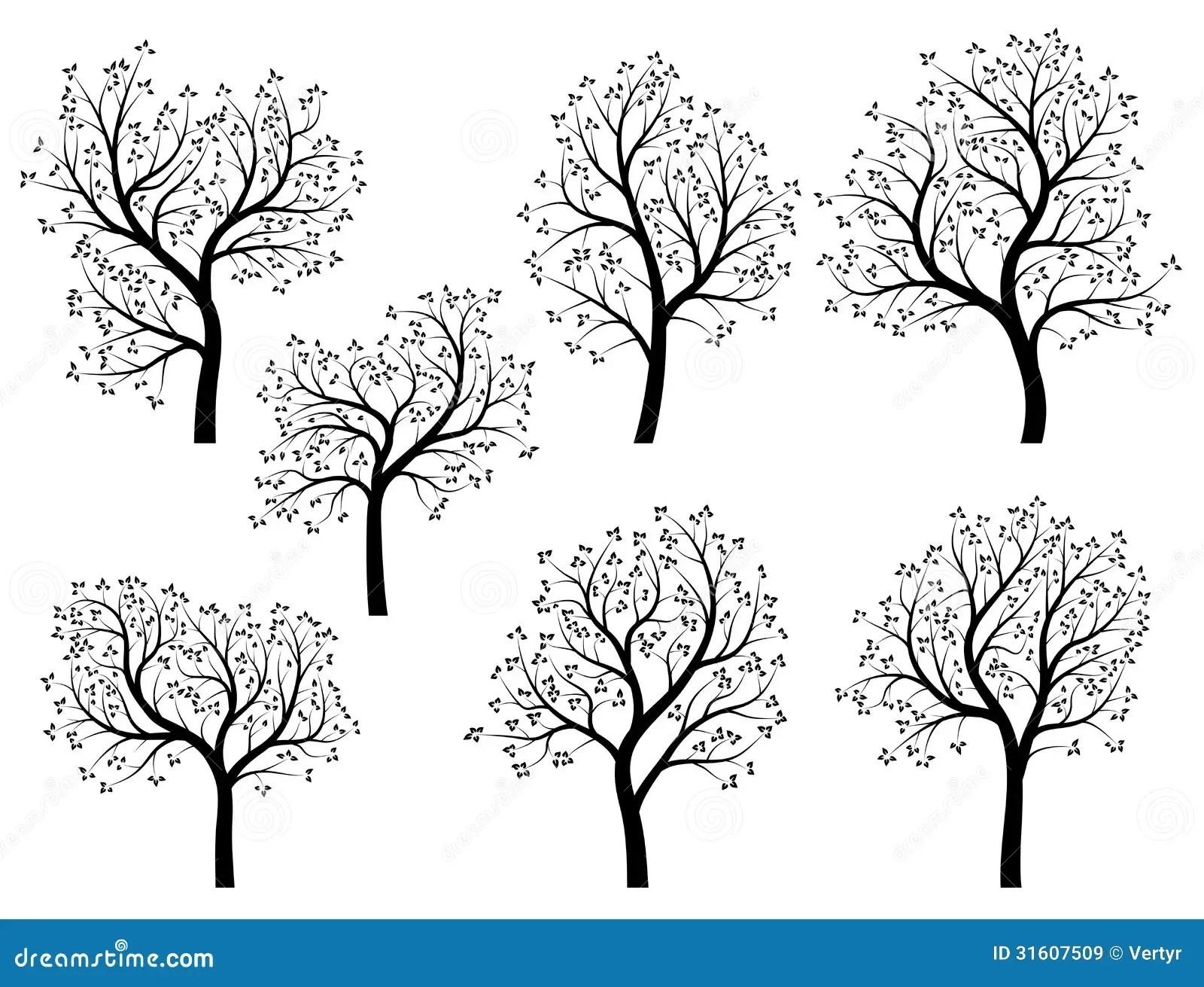 Abstrakte Schattenbilder Von Fruhlingsbaumen Mit Blattern