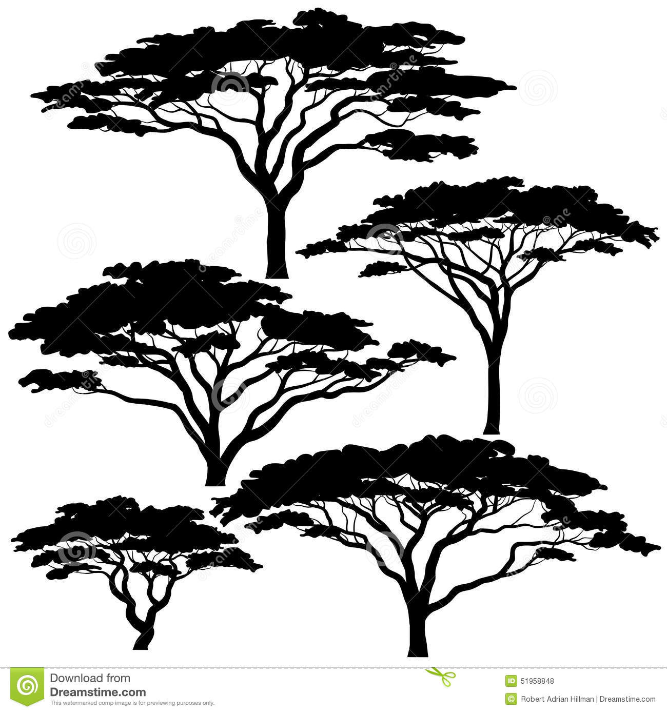 Acacia Tree Silhouettes Stock Vector Image Of Forest