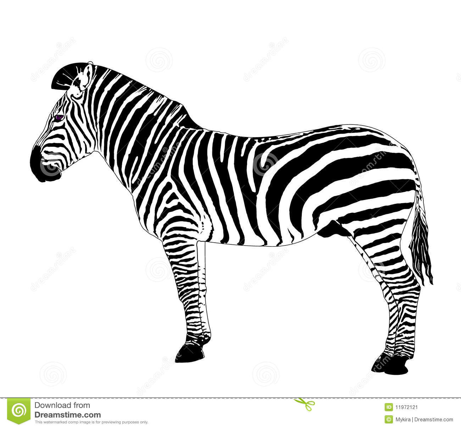 African Animals Vector Zebra Stock Vector