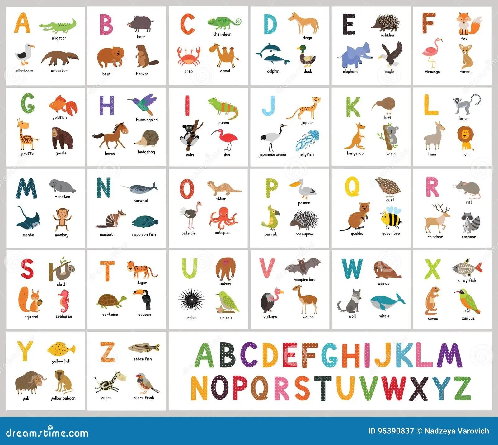 Alfabeto Bonito Do Jardim Zoologico Do Vetor Animais Do