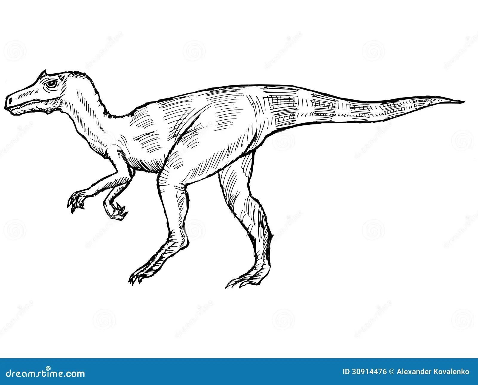 Allosaurus Royalty Free Stock Image