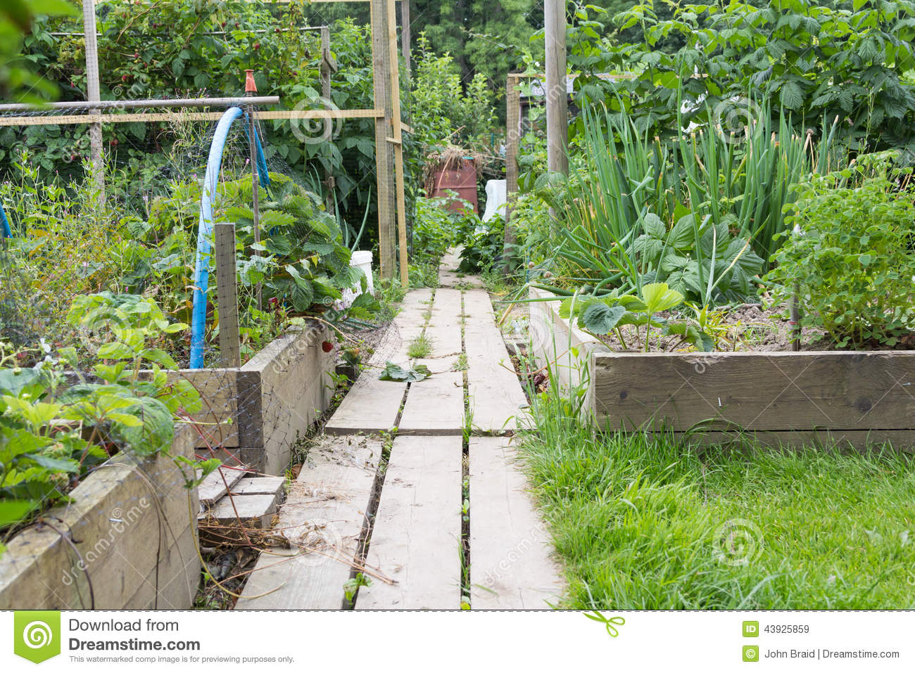 Raised Garden Depth