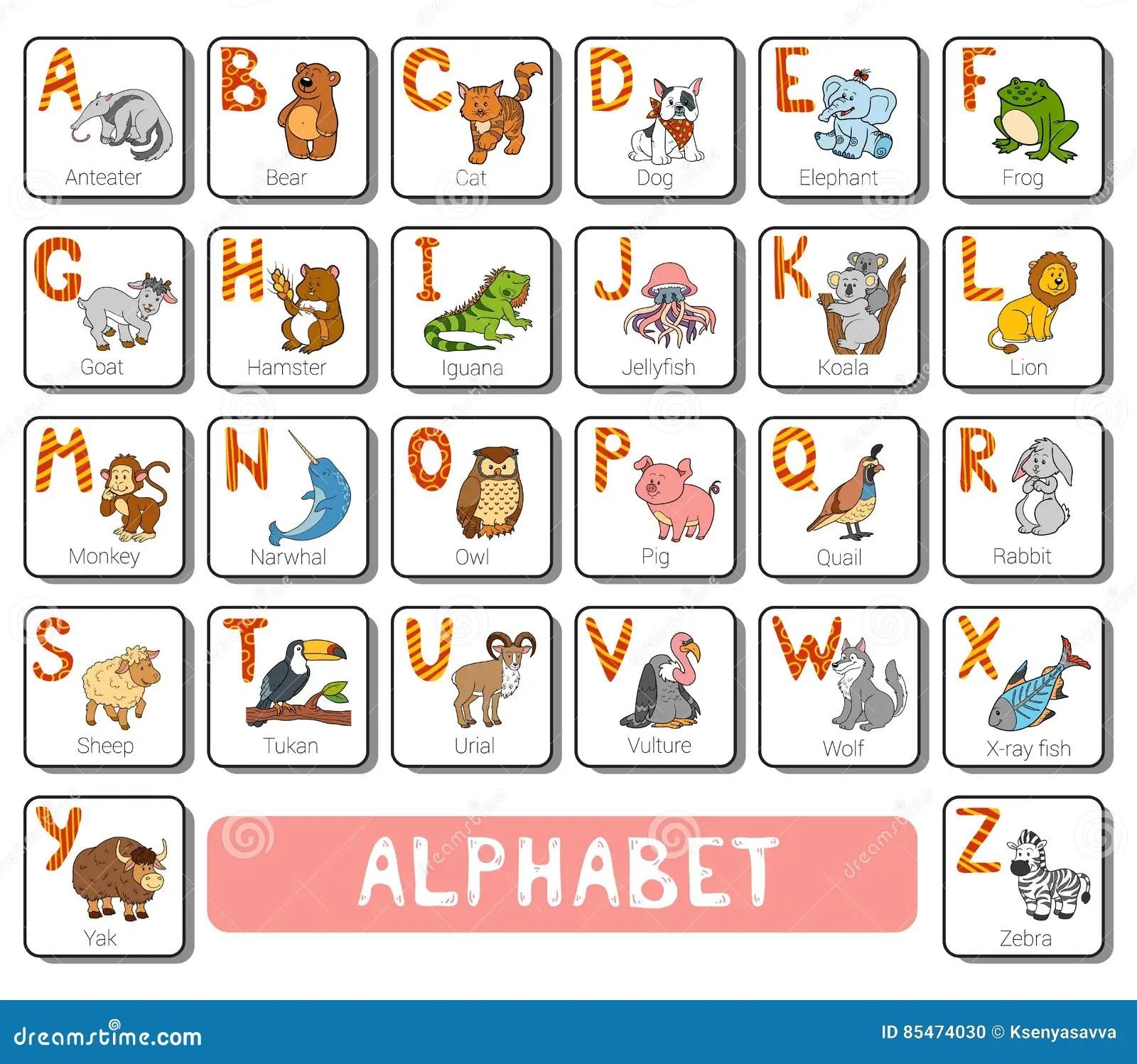Alphabet De Zoo De Couleur De Vecteur Carte Carree Avec