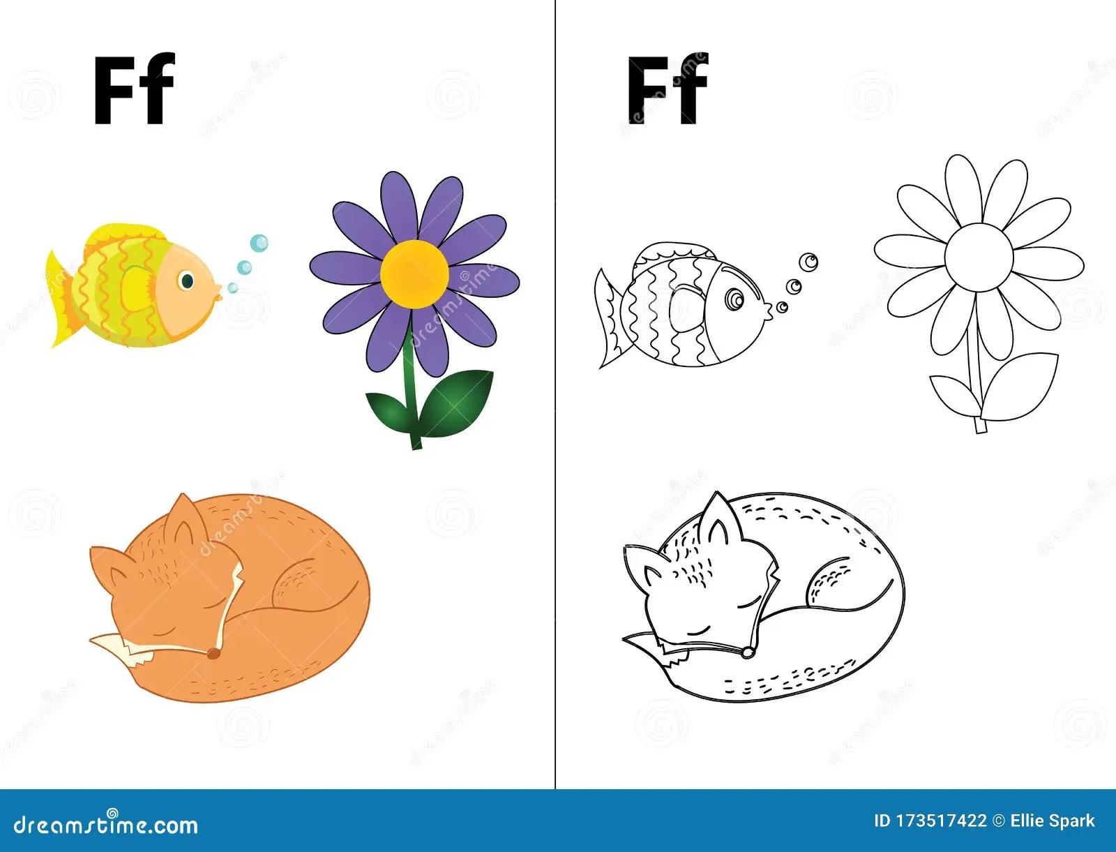 Letter F F Worksheet Stock Vector Illustration Of