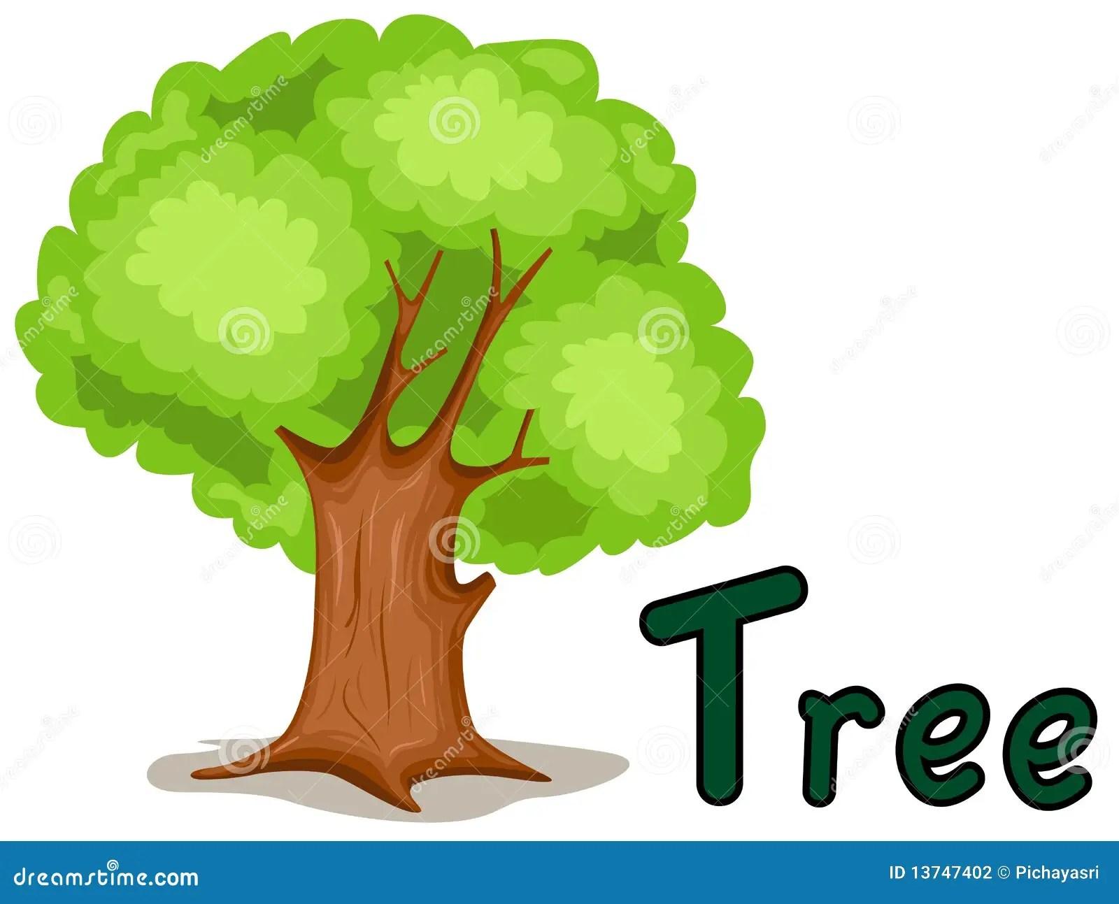 Alphabet T For Tree Stock Vector Illustration Of House