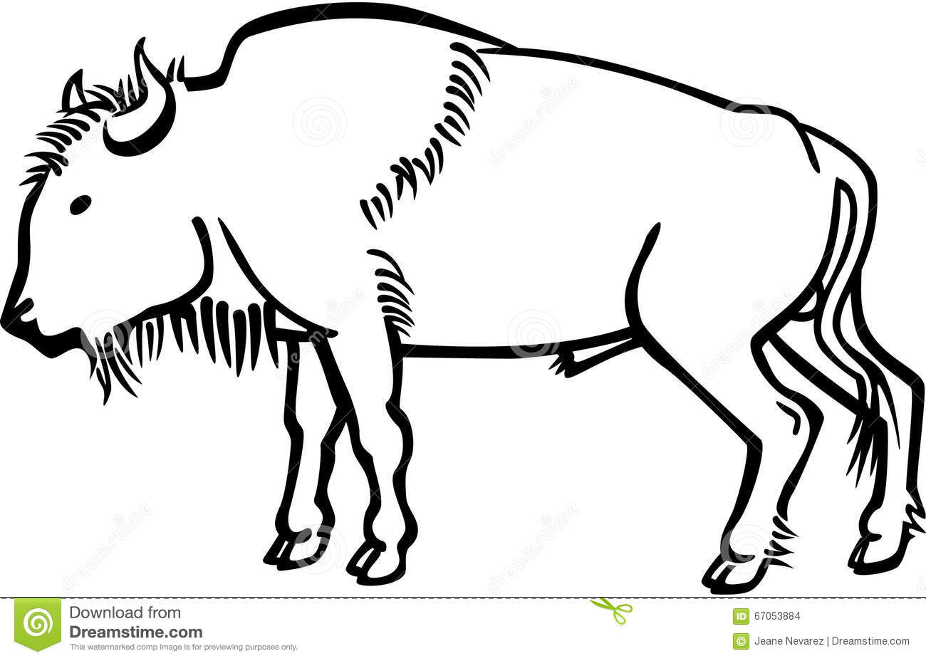 American Bison Stock Vector Illustration Of Standing