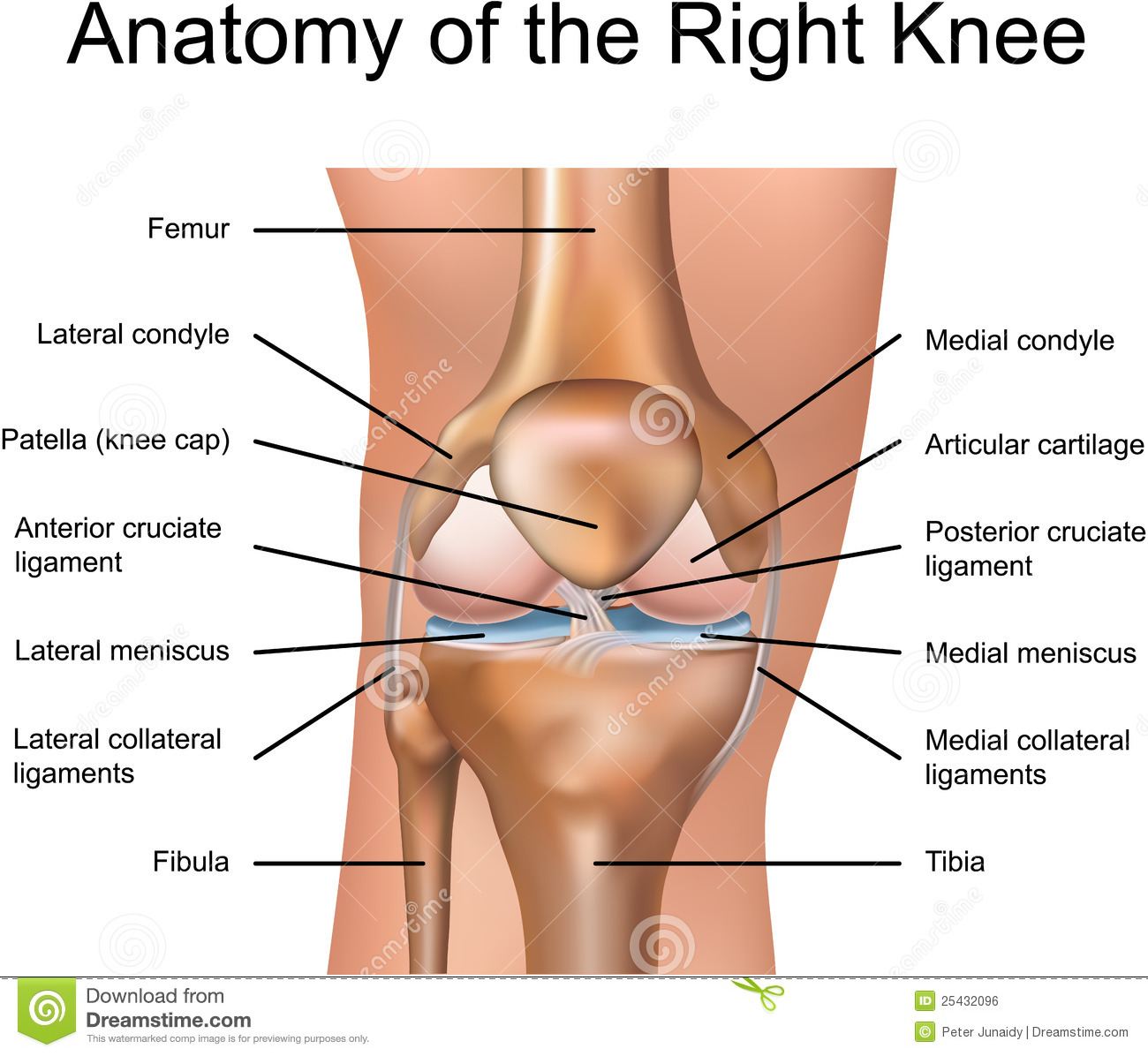 Pop Goes The ACL – 5 Simple Ways to Decrease Knee Injury | openworkout