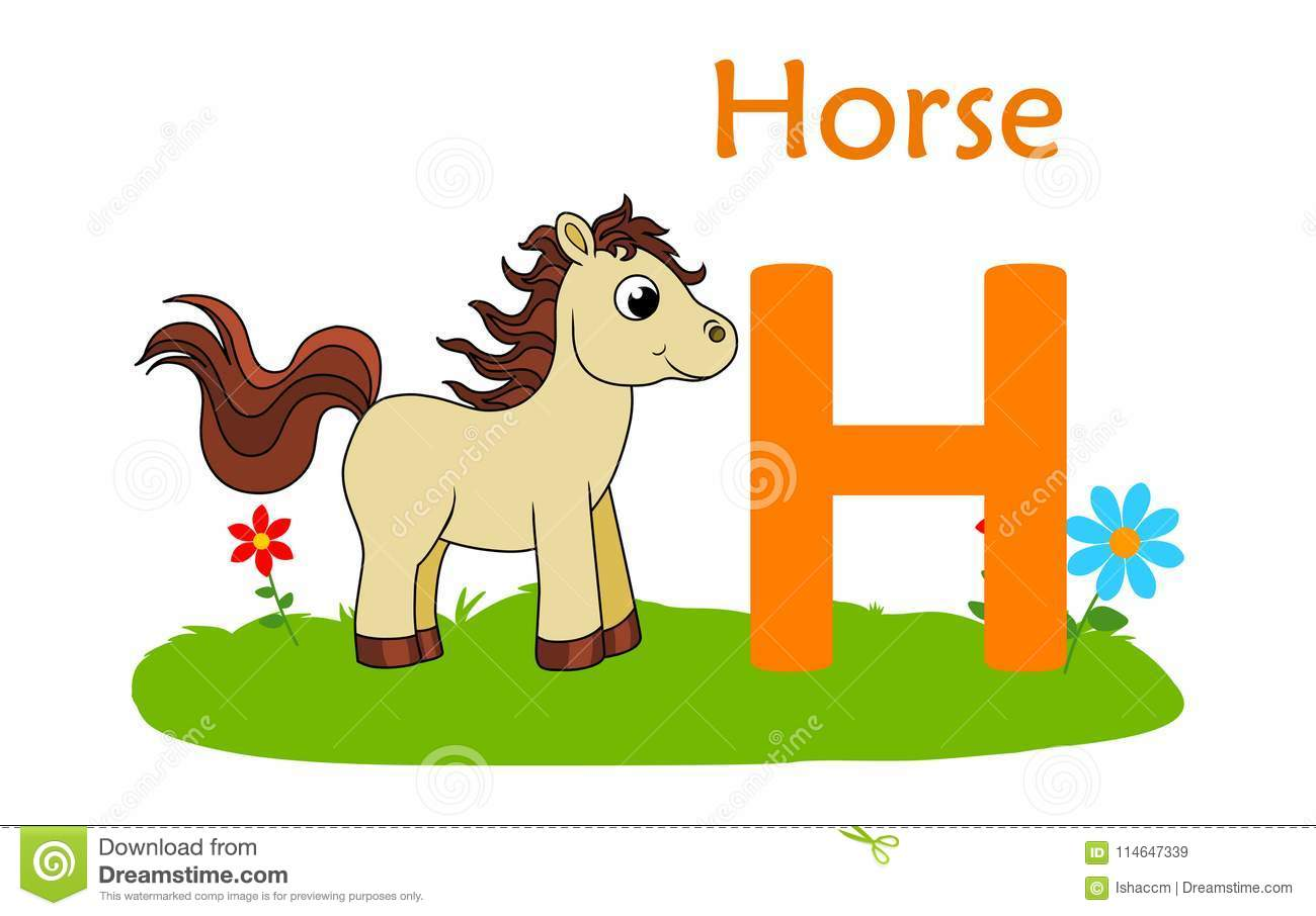 Animal Alphabet H H For Horse Stock Vector