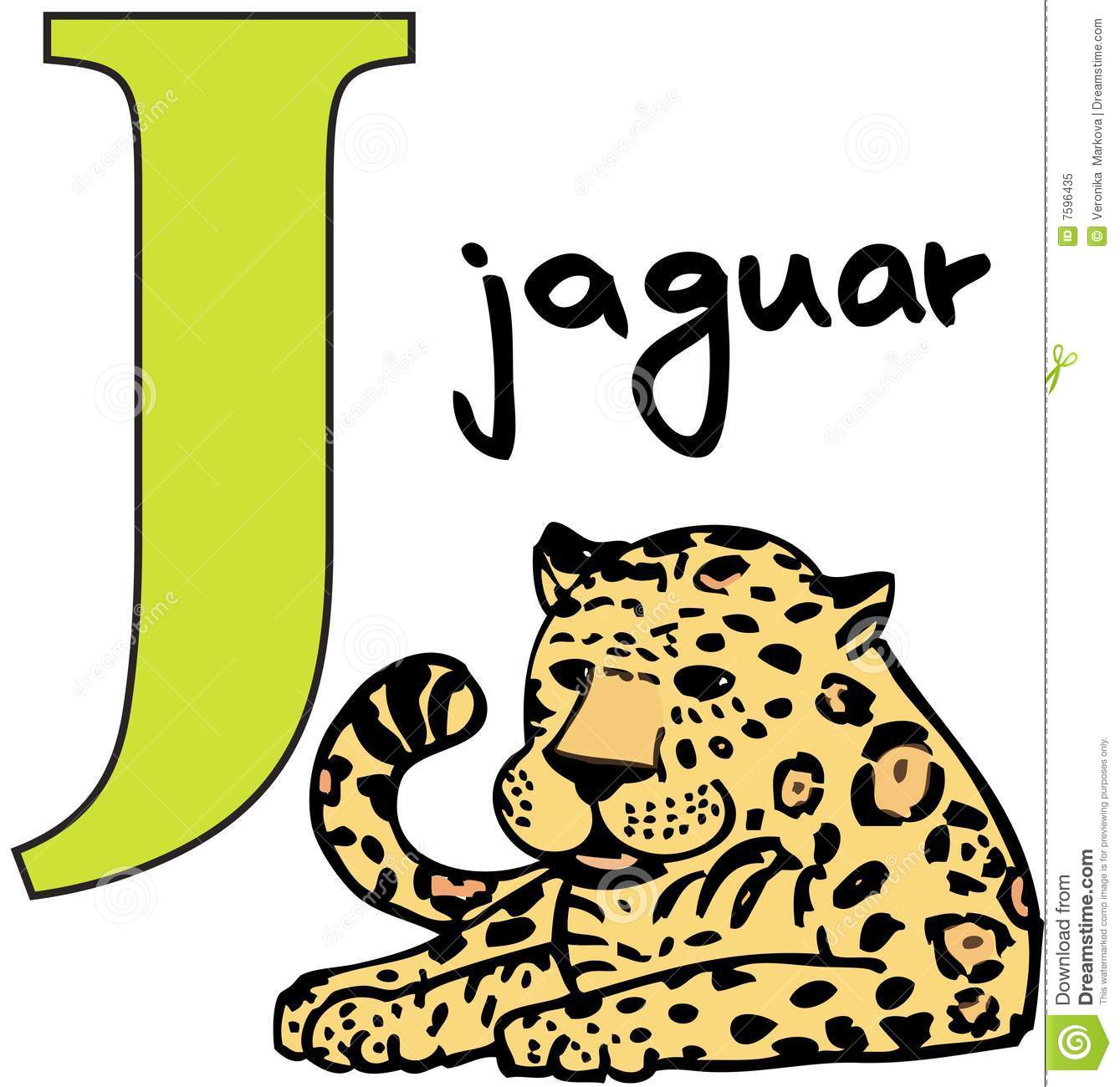 Animal Alphabet J Jaguar Stock Vector Illustration Of