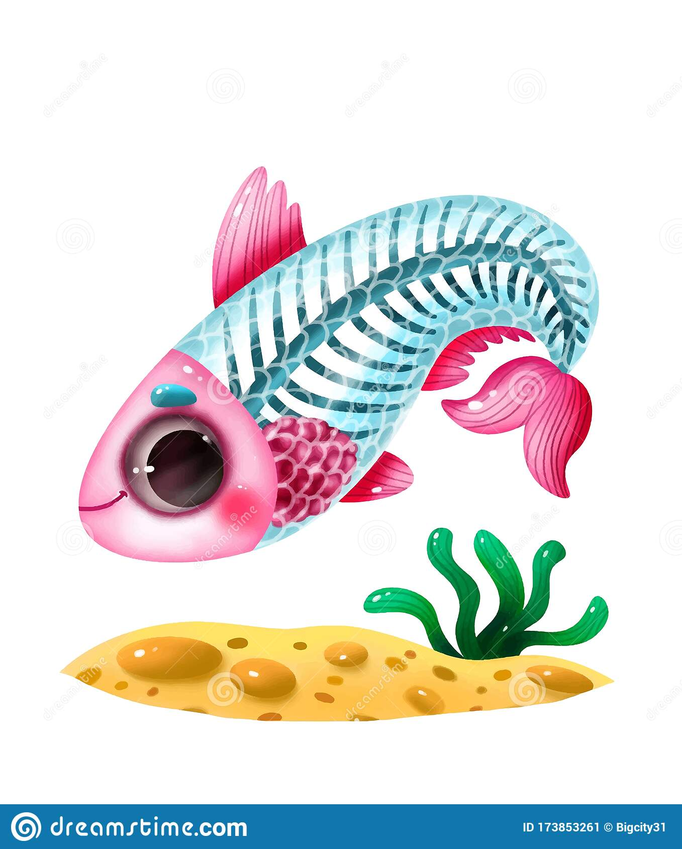 Animal Alphabet For The Kids X For The X Ray Fish