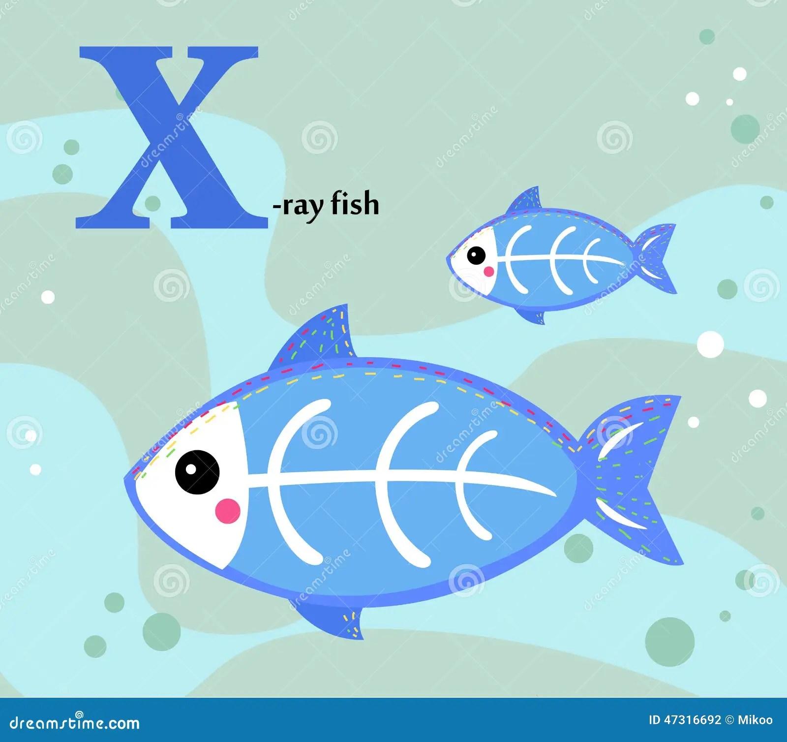 Animal Alphabet X X Ray Fish Vector Illustration