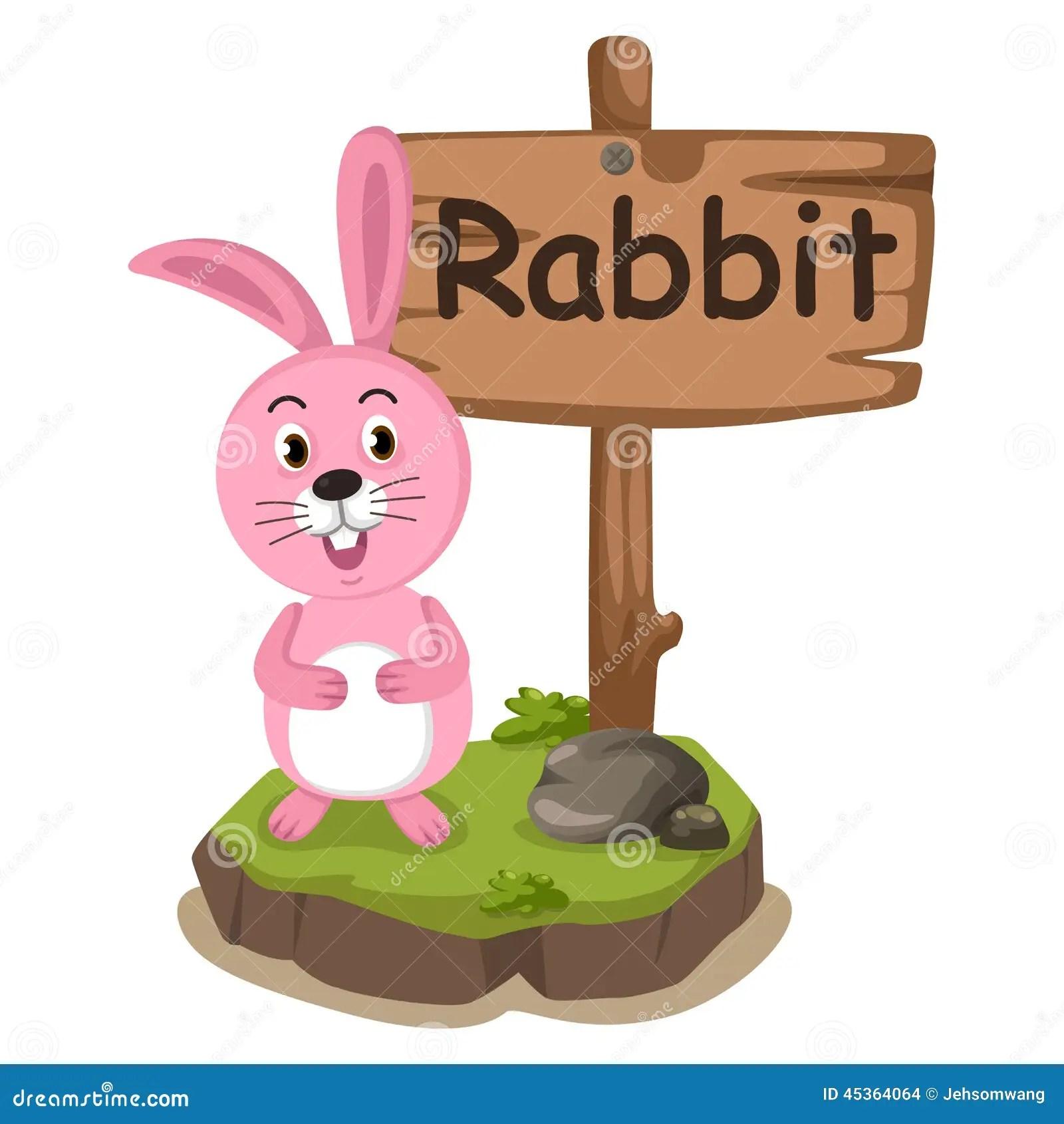 Animal Alphabet Letter R For Rabbit Stock Vector