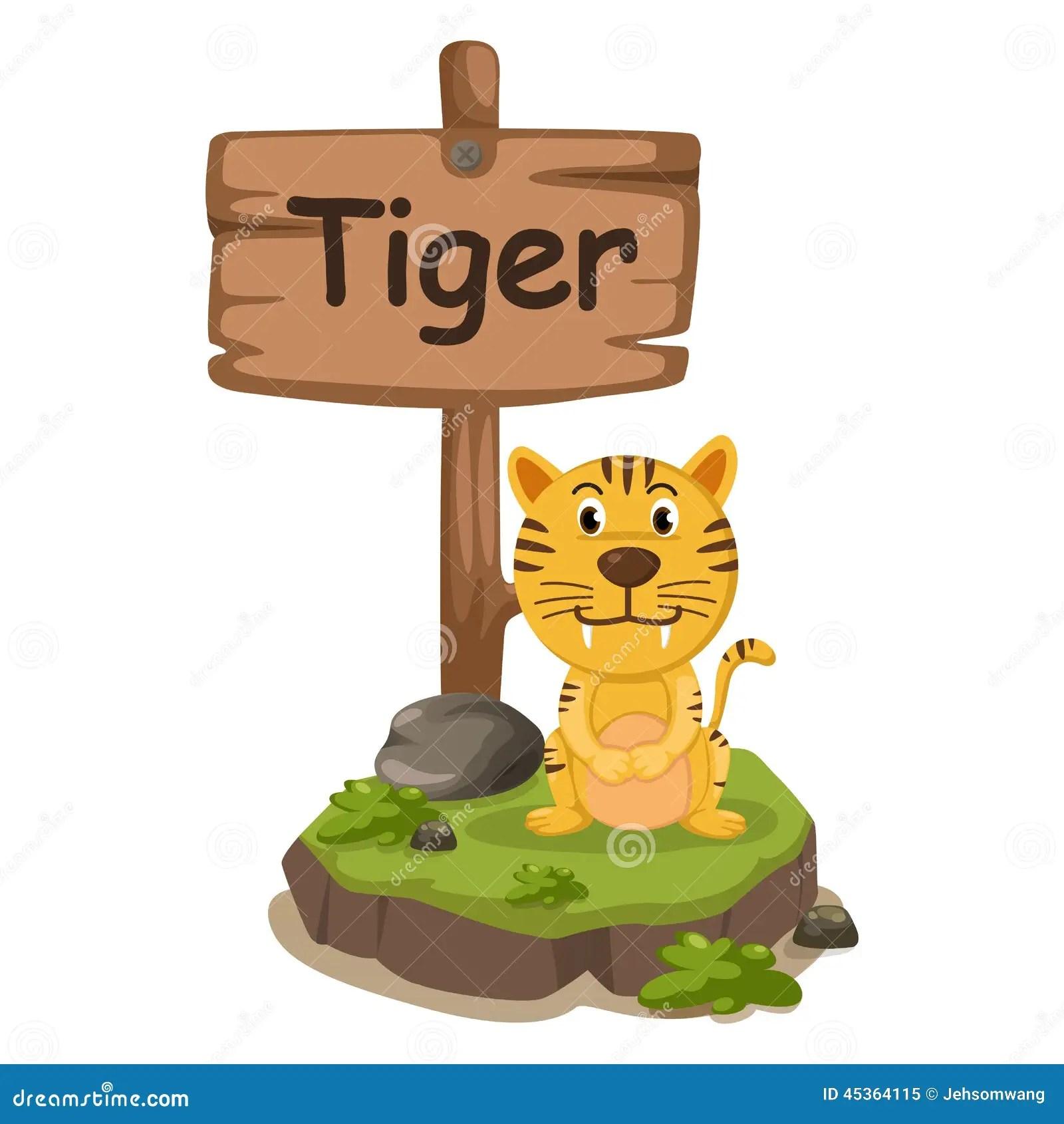 Animal Alphabet Letter T For Tiger Stock Vector
