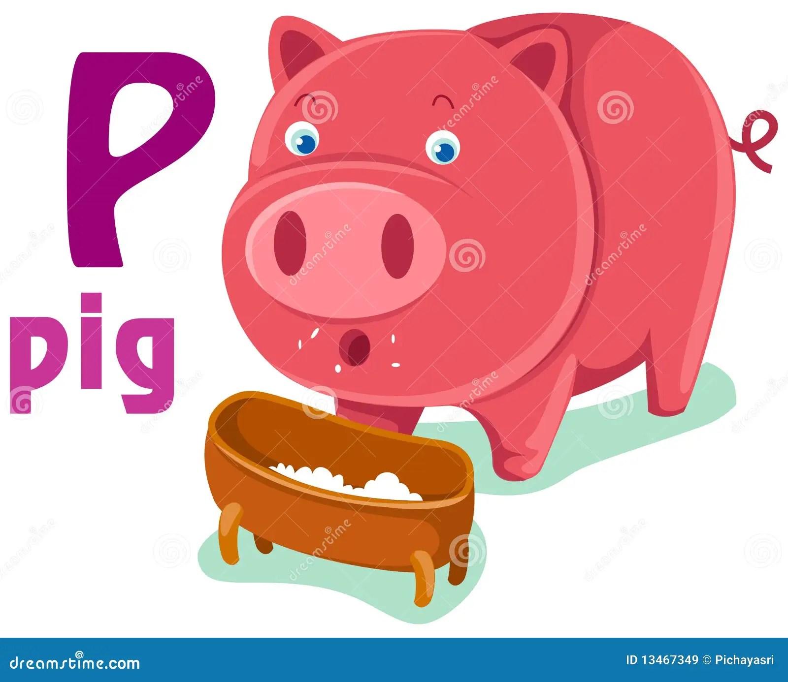 Animal Alphabet P Stock Vector Illustration Of Education