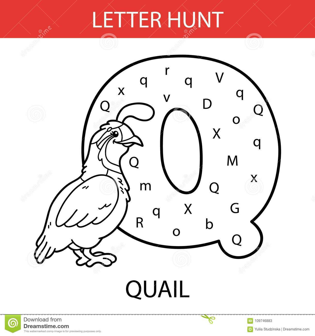 Animal Letter Hunt Quail Stock Vector Illustration Of