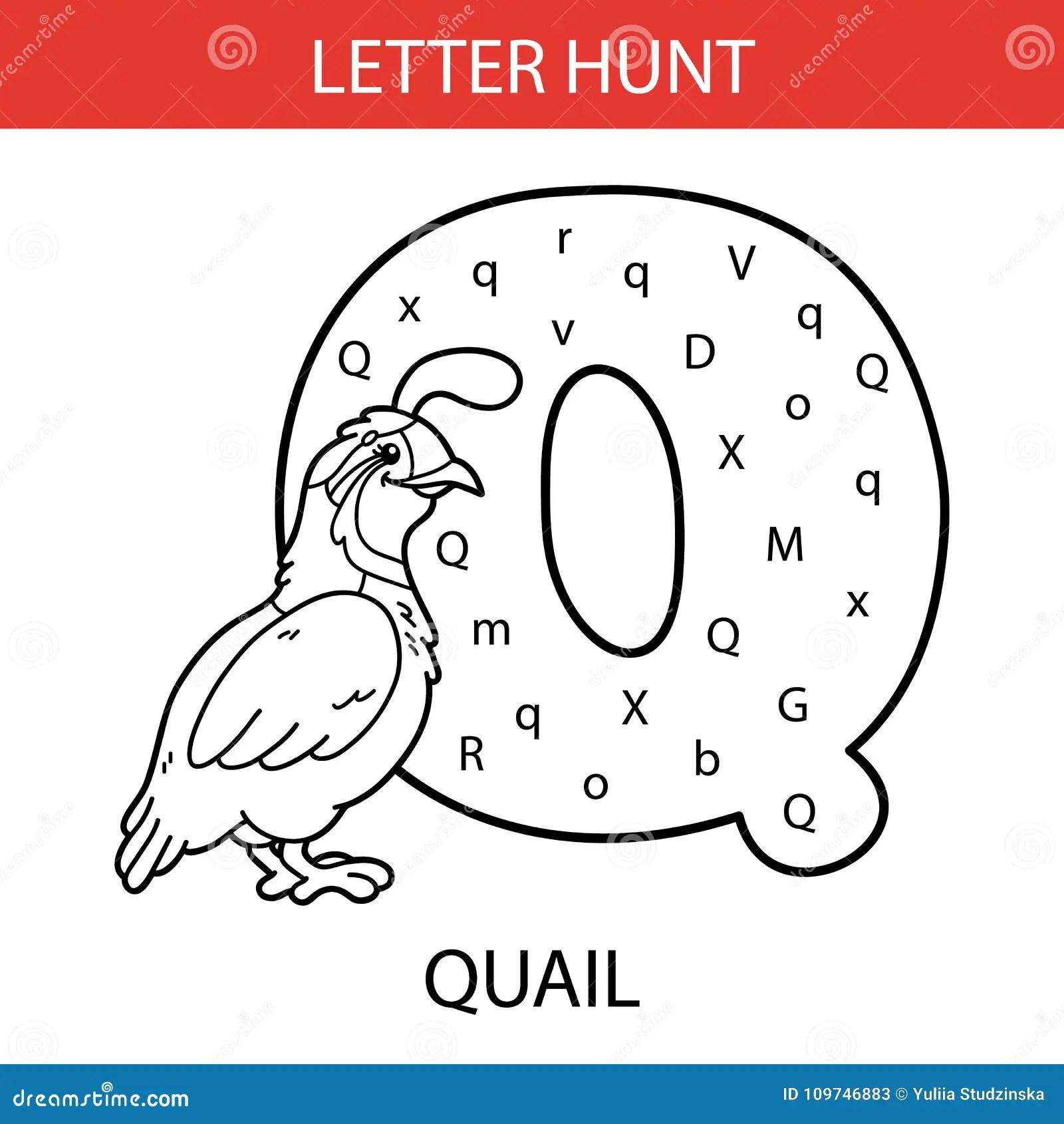 Animal Letter Hunt Quail Stock Vector Illustration Of Digital