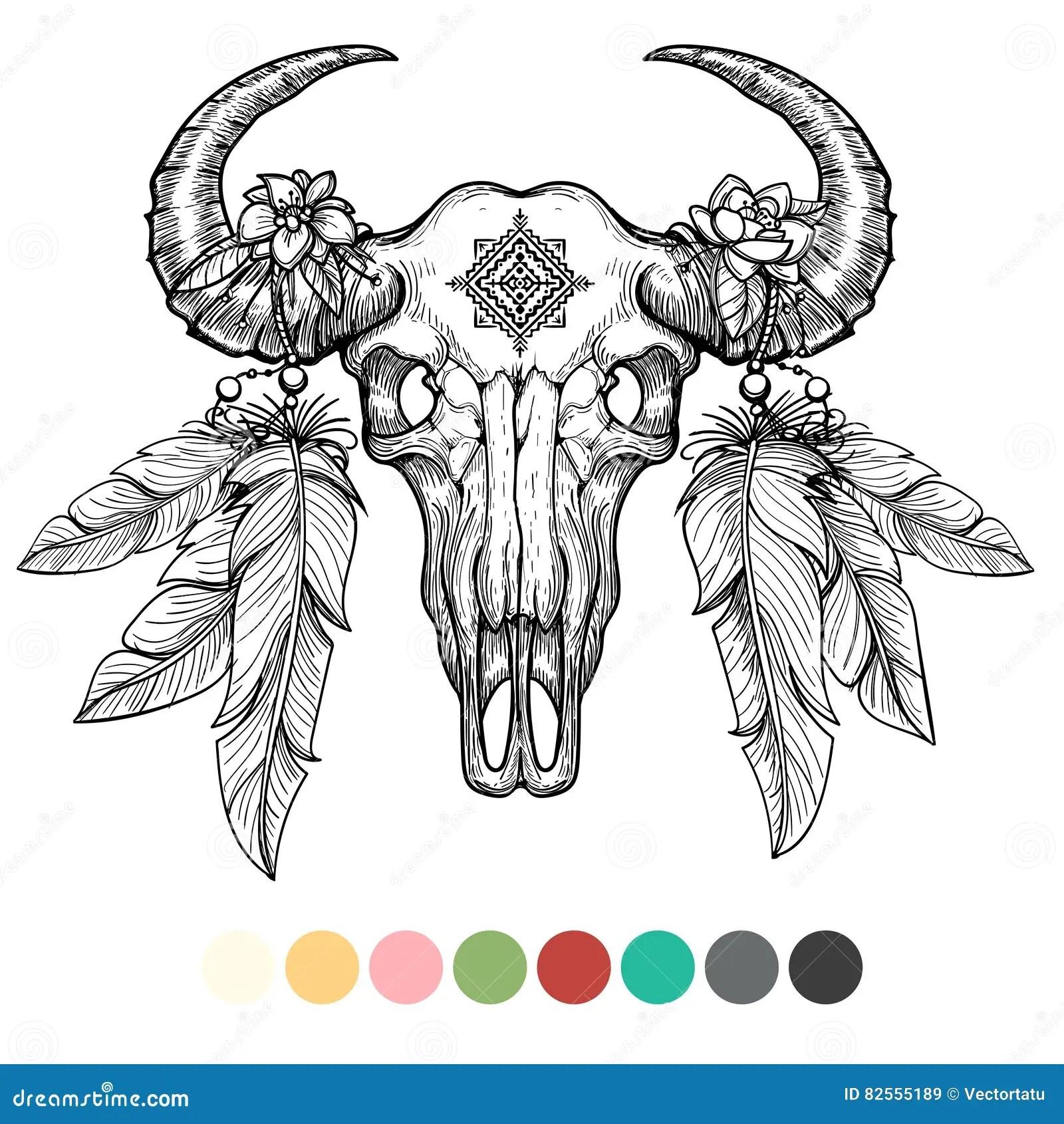 Animal Skull Coloring Design Stock Vector