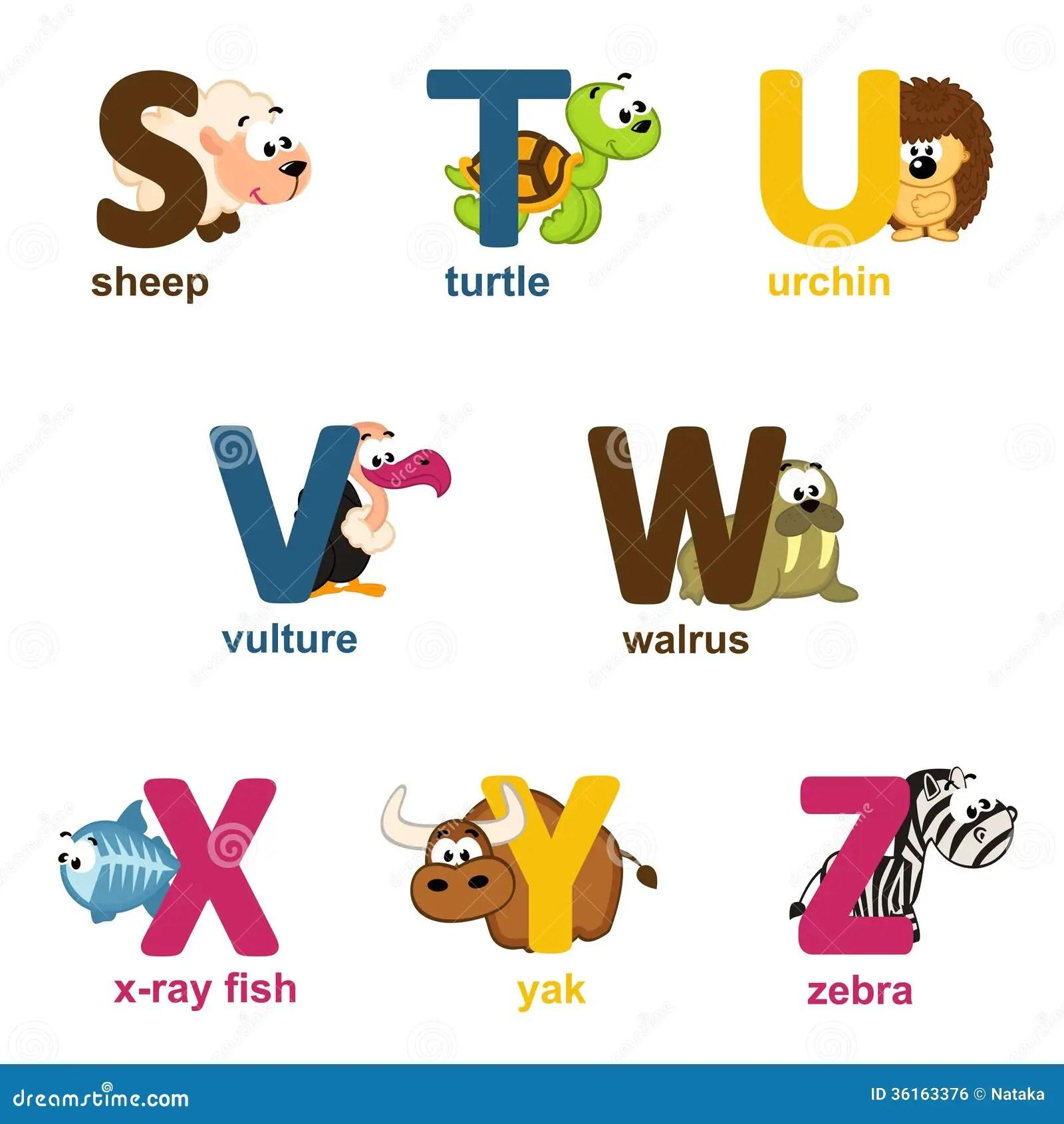 Animales Del Alfabeto De S A Z Ilustracion Del Vector