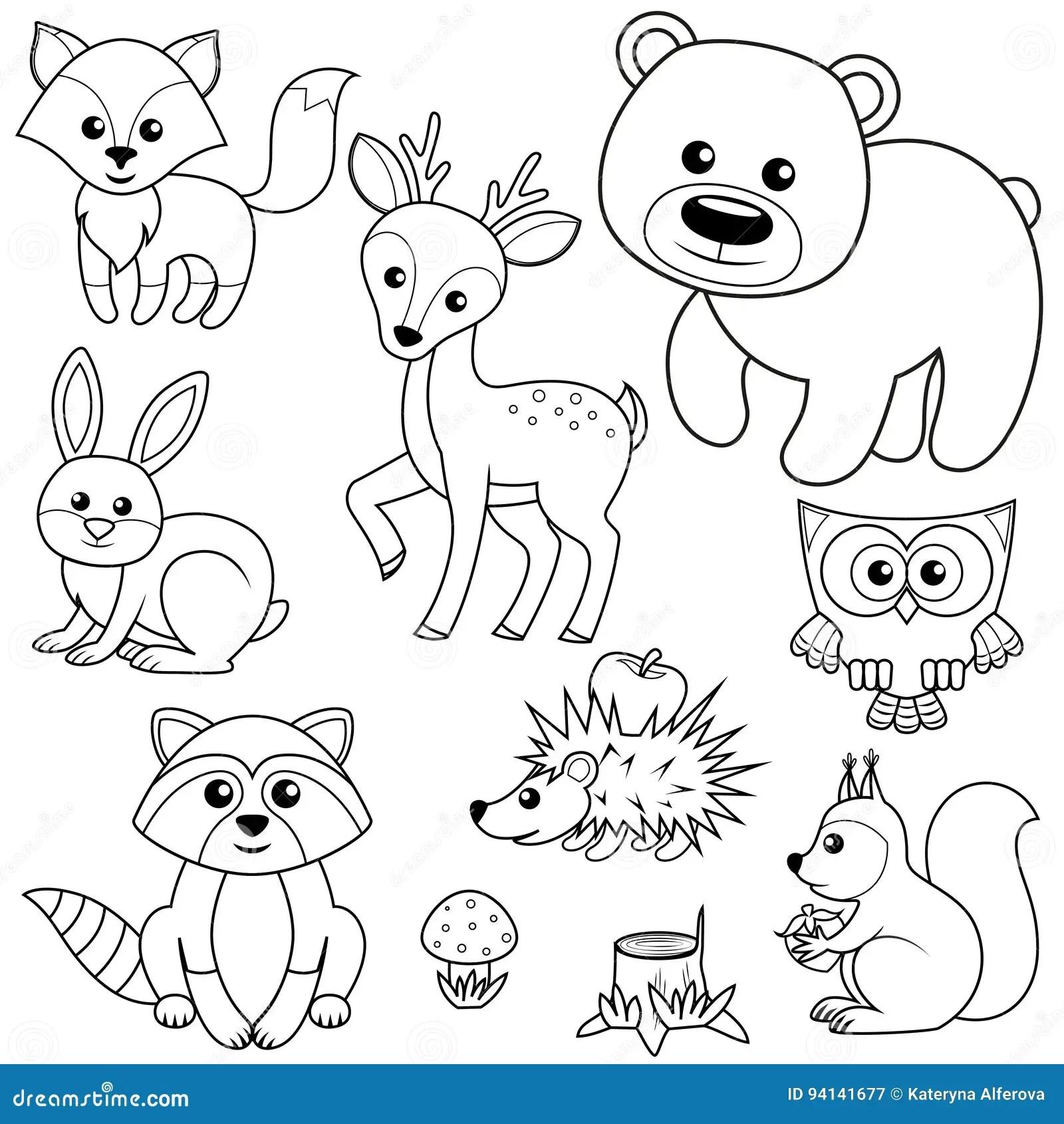 Animales Del Bosque Tocon Del Fox Del Oso Del Raccon De