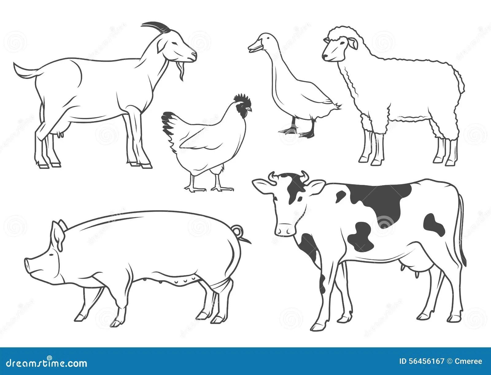 Animali Da Allevamento Illustrazione Vettoriale