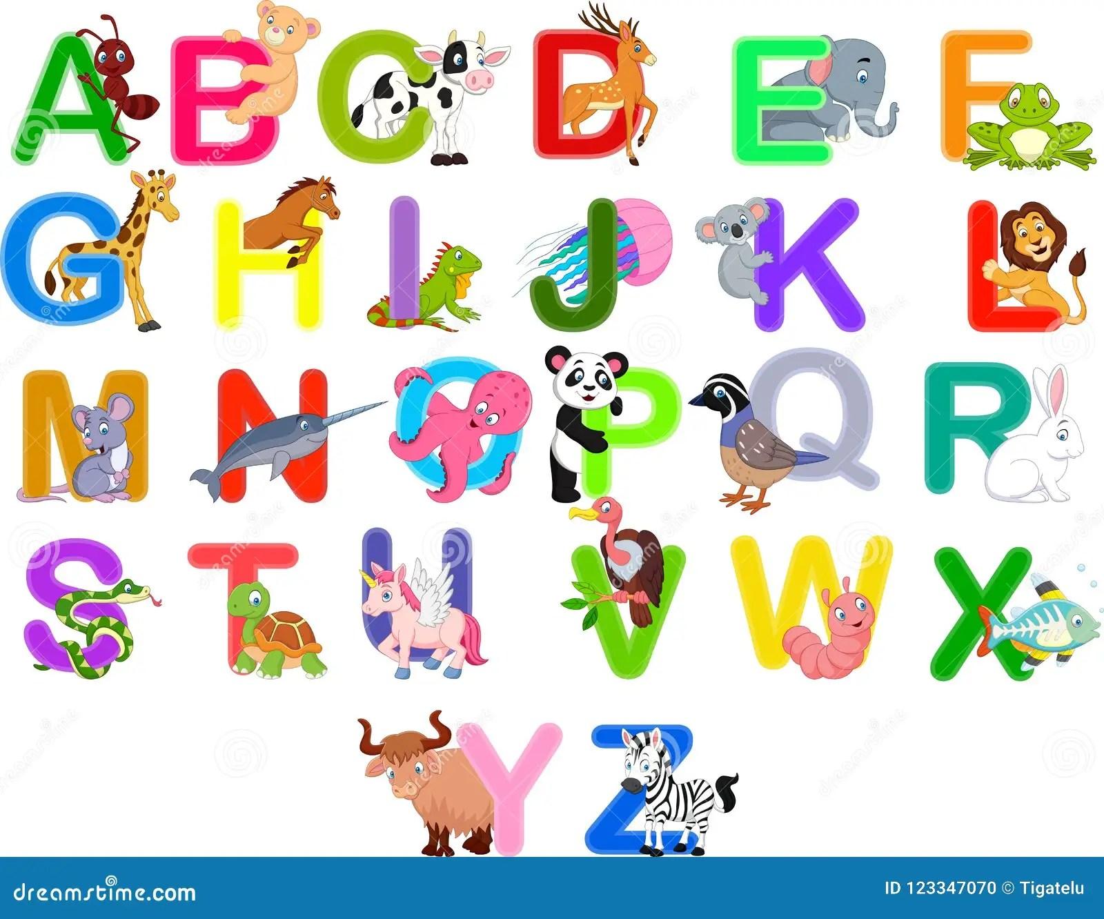 Alphabet Letter C Cow D Deer Vector Illustration