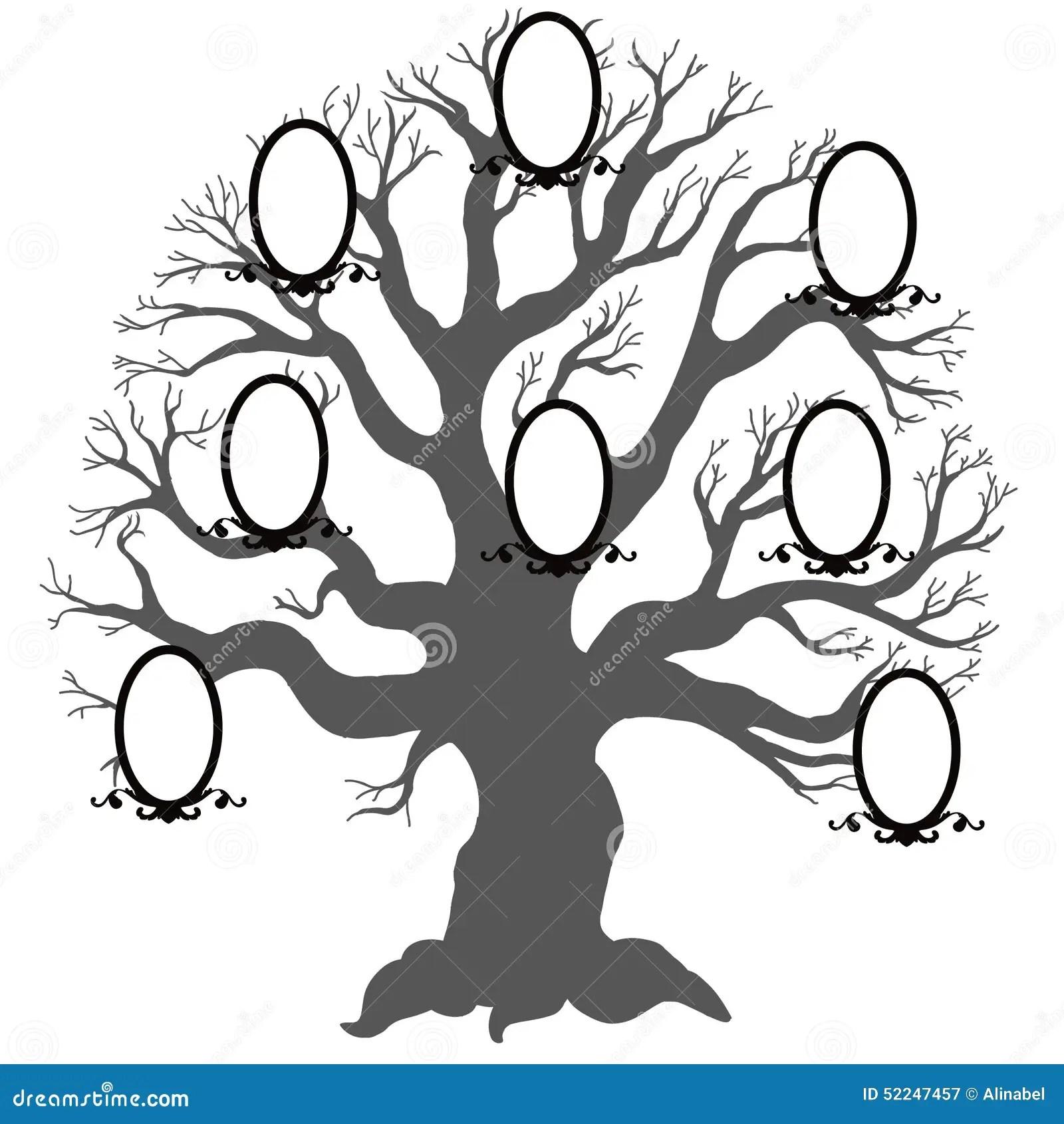 Arbre Genealogique Illustration De Vecteur Illustration De